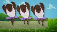 Buffalo ballet dancing across the screen BFHHS4
