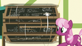 Cheerilee spinning the chalkboard around S6E14.png