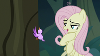 "Fake Fluttershy ""oh, that's right"" S8E13"
