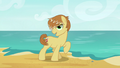 Feather Bangs singing on the beach S7E8.png