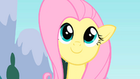 Fluttershy 'Way to go!' S1E16