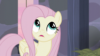 Fluttershy -aside from locking us in here- S5E02