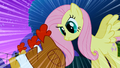 Fluttershy staring at chickens S01E17.png