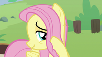 Pegasus Angel acting like Fluttershy S9E18