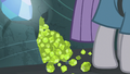Pile of chartreuse at Maud Pie's hooves S7E4.png