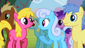 Ponies nodding in agreement S2E15.png