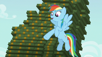 Rainbow --you can totally keep an eye on me-- S6E15