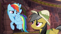 Rainbow Dash --he's usually right-- S6E13