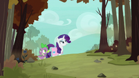 Rarity and Spike entering the forest S8E11