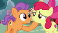 Tender Taps picks Apple Bloom's chin up S6E4.png