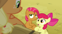 Apple Bloom 'I haven't had any time with Babs!' S3E08