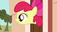 Apple Bloom asks about treats S03E11
