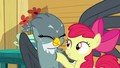 Apple Bloom lightly poking Gabby S6E19.png