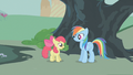 Apple Bloom thanking Rainbow Dash S01E12.png
