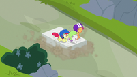 Cutie Mark Crusaders sledding on a rock slab S7E6