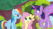 "Fluttershy ""is that any way to talk to a friend?"" S4E21"