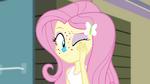 Fluttershy rubbing her face EG2