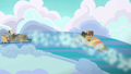 Hoops and Dumb-Bell in Cloudsdale Derby S6E14.png