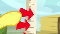 Pegasus judge places arrow on measuring stick S5E6