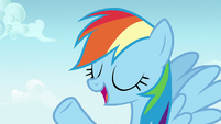 Rainbow Dash -pretty much anything else- S7E14
