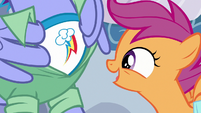 Scootaloo looking at Bow Hothoof's shirt S7E7