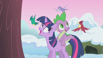 Twilight with birds S1E11