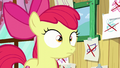 Apple Bloom hears Scootaloo S6E4.png