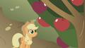 Applejack apples S1E04.png
