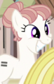 Cutie Map 1 UPM4 Earth pony ID S5E1.png