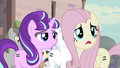 """Fluttershy """"joining"""" the town S5E02.png"""