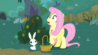 Fluttershy and Angel hear a loud noise S8E18