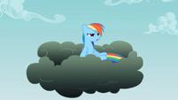 Rainbow Dash about me S2E8