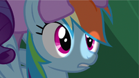 Rainbow Dash had chance S2E21