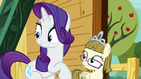 Rarity and Zipporwhill look at the Crusaders S7E6