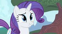Rarity smiling 2 S1E20
