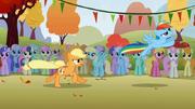 S01E13 Rainbow Dash odlatuje