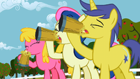 The ponies are drinking cider S1E15