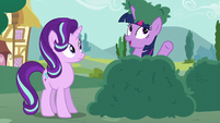 "Twilight ""if it isn't working out"" S6E6"