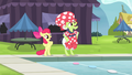 Apple Bloom and Granny Smith stretching S4E20.png