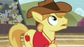 Braeburn looking up at Pinkie's shot S6E18.png