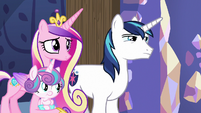 Cadance and Shining Armor stare at Twilight MLPBGE