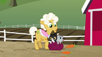 Goldie notices carrots on the ground S9E10