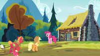 Pinkie Pie and the Apples in front of Goldie's house S4E09