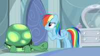 Rainbow Dash -than asleep in the cold- S05E05