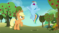 Rainbow Dash in angered agreement S8E5