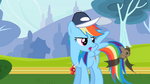 Rainbow Dash looking at bat S2E07