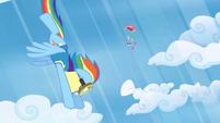 Rainbow Dash to the rescue S3E7