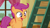 Scootaloo 'Really' S3E06