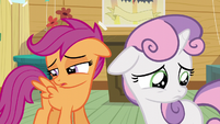 Scootaloo and Sweetie are still blank flanks S5E4