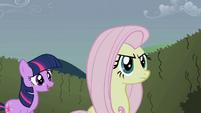 Twilight finds Fluttershy S2E01